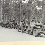 1943-09-03. EASTERN AUSTRALIA. U.S. ARMY MANOEUVRES. AMERICAN MOTORISED INFANTRY ON THE MOVE, DURING LARGE SCALE MANOEUVRES IN EASTERN AUSTRALIA